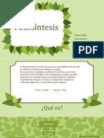fotosntesis