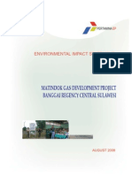 1-1-1_Environmental Impact Statement PPGM