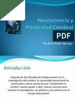 Neuro Cien Ciay Plastic i Dad Cerebral
