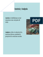 Anestesia Analgesia