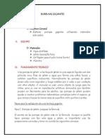 INFORME DE BURBUJAS GIGANTES psc.docx