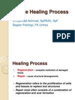Tissue Healing Process - DA