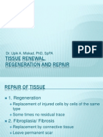 Tissue Renewal, Regeneration and Repair