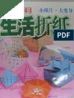 Desconhecido - Practical Life Origami