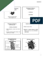 Sistema Cardiaco [Modo de Compatibilidade]-1