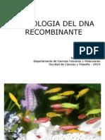 6 DNA Recombinante BMC2014