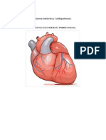 Sistema Endócrino y Cardioplumonar