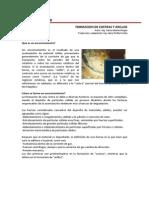Art.técnico - Formación de Costras y Anillos