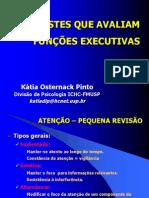Esp Neuro 2005-Testes Função Executiva