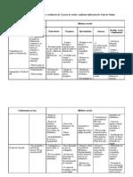 Tabela-matriz_-_novo_curso_-_Filipa