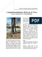Compartmentalization of Decay in Trees