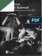 Slavoj Zizek - Yamuk Bakmak-libre