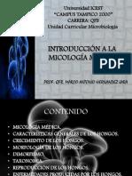 Introduccion a La Micologia