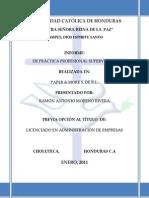 Informe de Practica Profesional Ramon Moreno