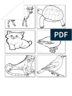 hitamputih,haiwan,gambar haiwan