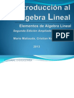 Matiauda Mario (2013). Introducción Al Algebra Lineal v 26 1-03-13