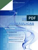 Informe Final de Bocatomas
