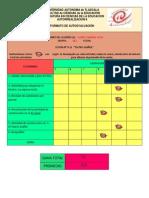 Formato-Autoevaluacion-9-15-de-15