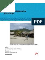 Pueblos indígenas de Honduras.pdf
