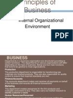 internal orgnizational environment