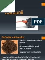CARBUNII