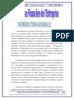44593075 Analyse Financiere Et Diagnostic