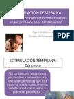 Estimulacion Temprana 1 2013