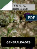 La Alfalfa Pres