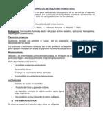 Trastornos Del Metabolismo Pigmentario