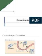 Comunicação Celular FG