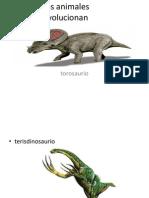 Los Animales Evolucionan
