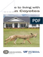 A Guide to Living With Urban Coyotes