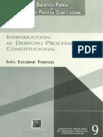 Iván Escobar Fornos - Introducción Al Derecho Procesal Constitucional
