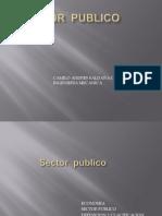 Sector  publico.pptx