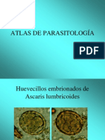Atlas a Color de Parasitologia