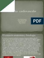 Exposicion Biologia Cardiovascular
