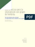 guia grupos hombres, Diputación Alava