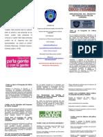 Triptico de Policía Comunal 2014