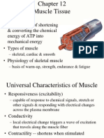 12 Muscle Tissue
