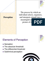 PIPD Session 1 Perception