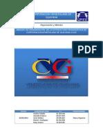 Manual Organizativo