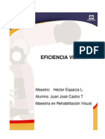 Eficiencia Visual