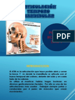 2do Bimensual Anatomia Dra Huacon