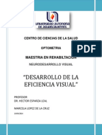 Desarrollo de La Eficiencia Visual Mlc