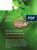 Biologia - Reproduccion - Partenogenesis - General - Partenogenesis