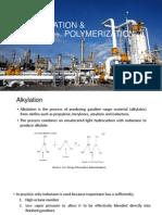 Alkylation and Polymerization Process