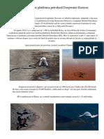 Accidentul de Pe Platforma Petrolieră Deepwater Horizon