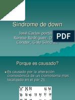 Síndrome de Down Biologia