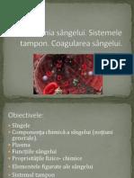 Biochimia sângelui 28