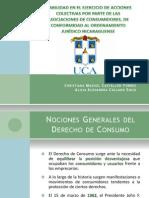 Monografia Viabilidad de la Introduccion de Acciones Colectivas en Nuestro Ordenamiento Juridico para la defensa de los Derechos de los Consumidores y Usuarios